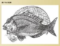 Hyoushi472